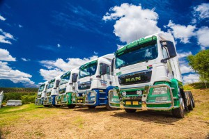 Imperial Cargo's MAN trucks TGS stand proud in the heart of the wineland